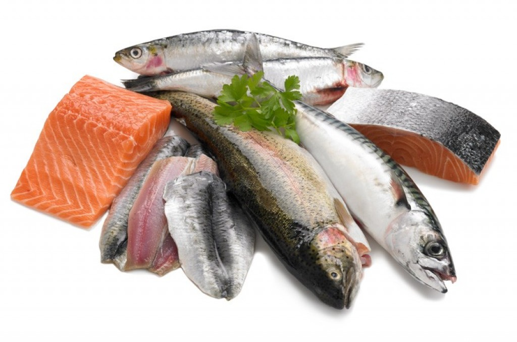 salmons and trouts